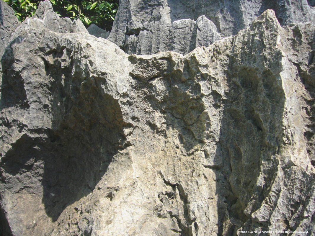 石林の石のアップ2