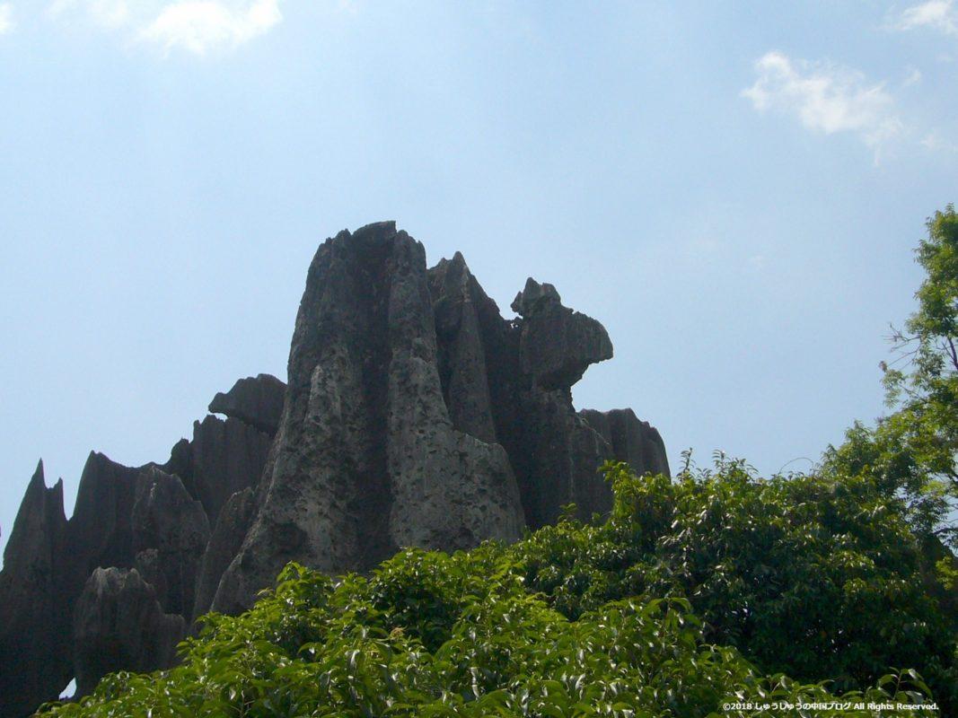石林の奇岩(フタコブラクダ)