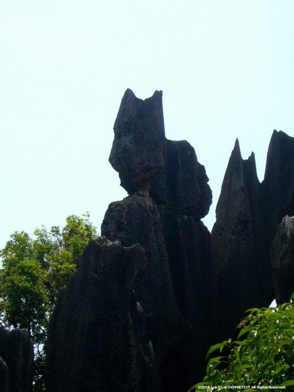 石林の奇岩(フクロウ)