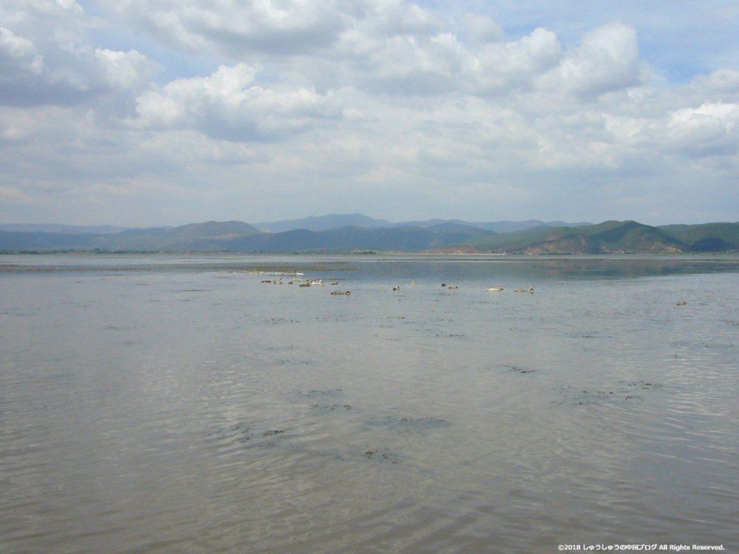 麗江の茶馬古道ツアー