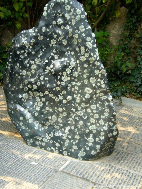 洛陽龍門石窟の佛手牡丹石その2