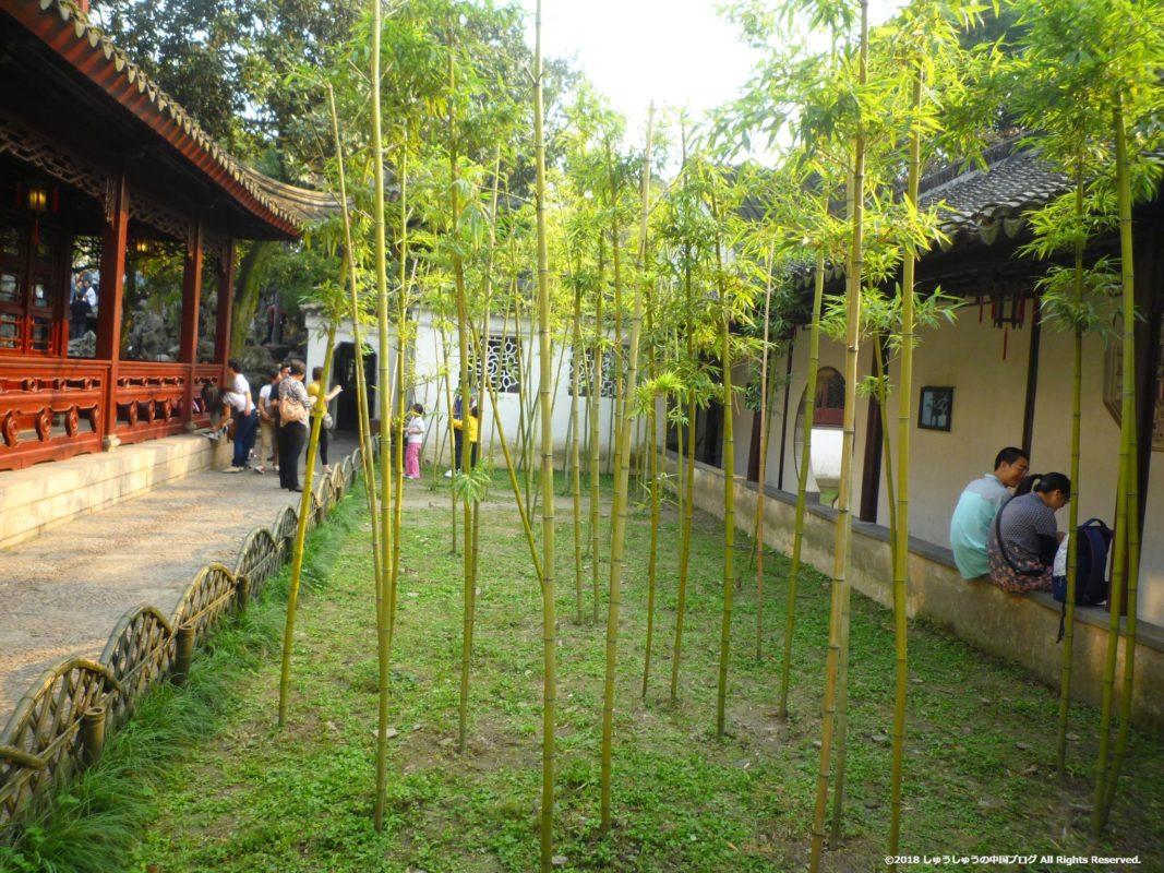 蘇州の獅子林の中庭の竹