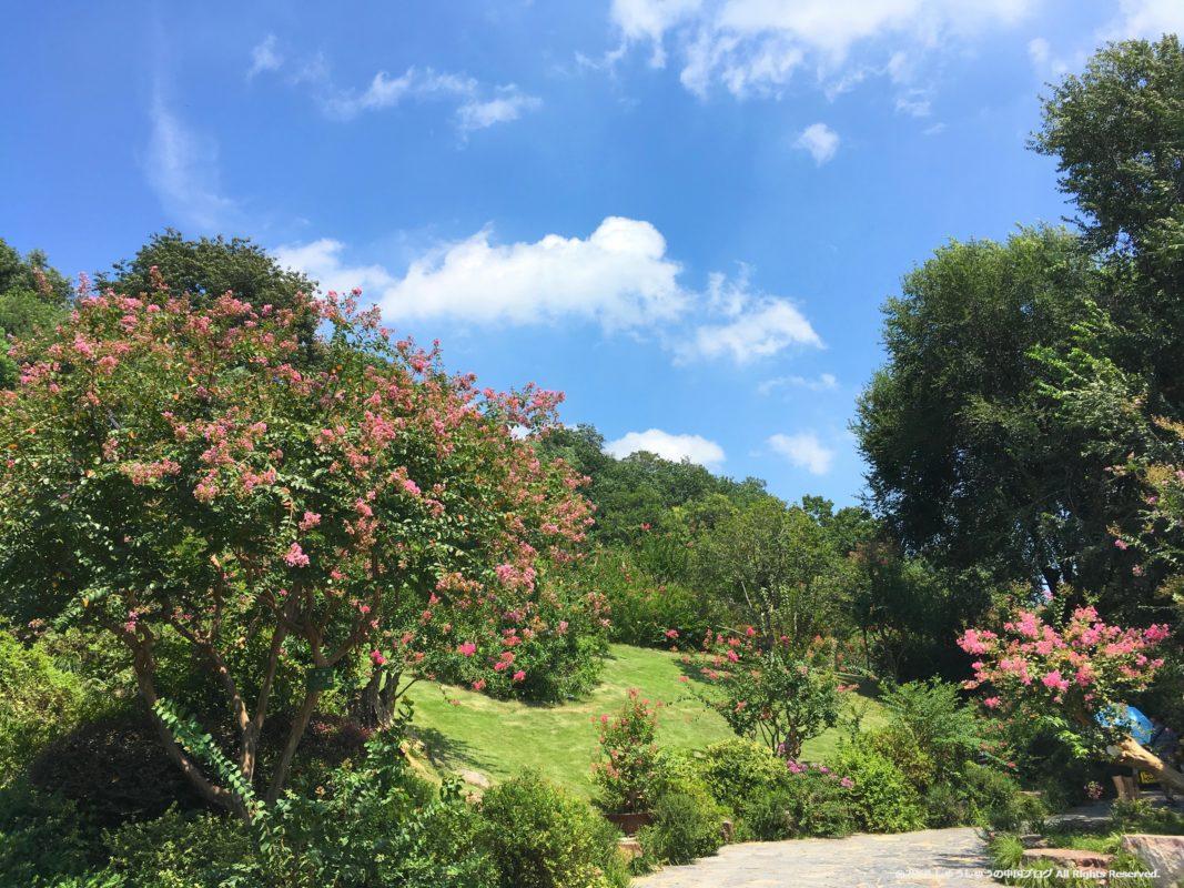 黄鶴閣の庭園3